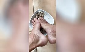 I have the master's lunch with my feet on the plate